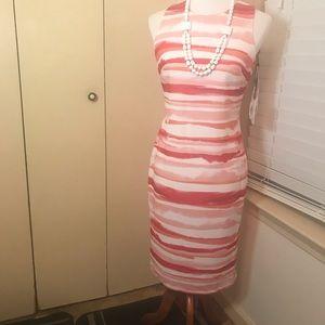 CalvinKlein Fitted Sleeveless Sheath Dress Sz6 NWT